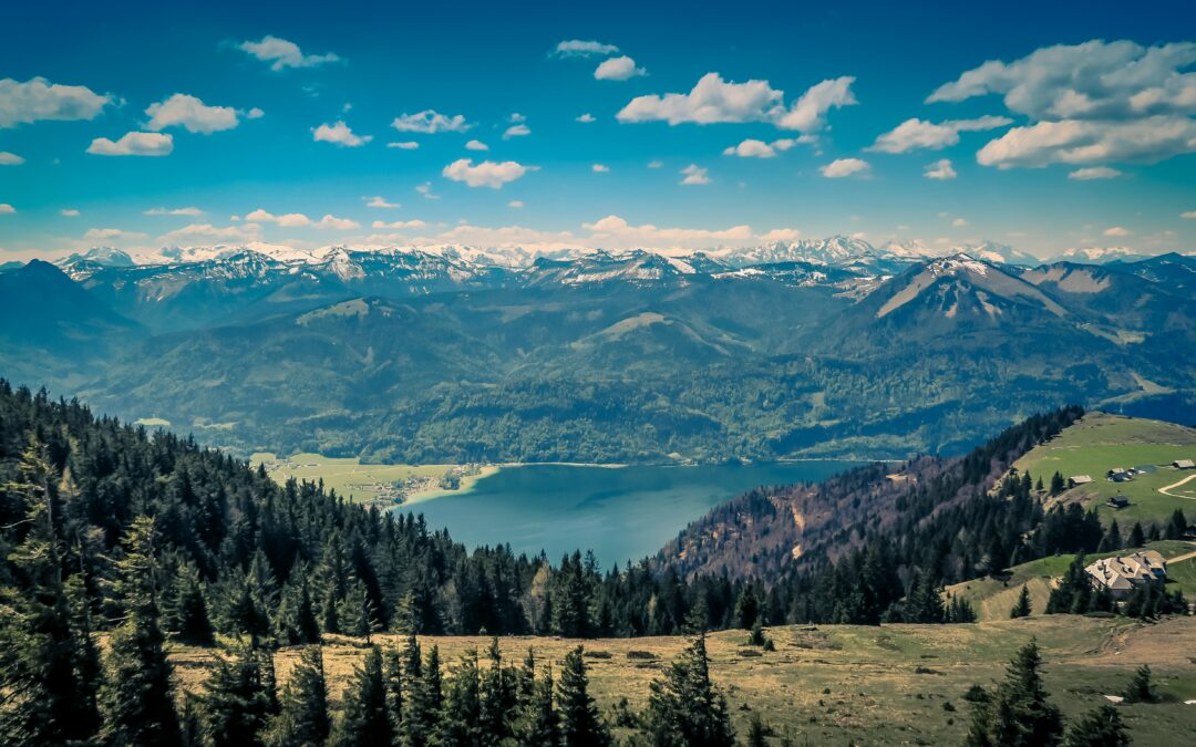 Typically Austrian – 10 things you need to know about Austrians